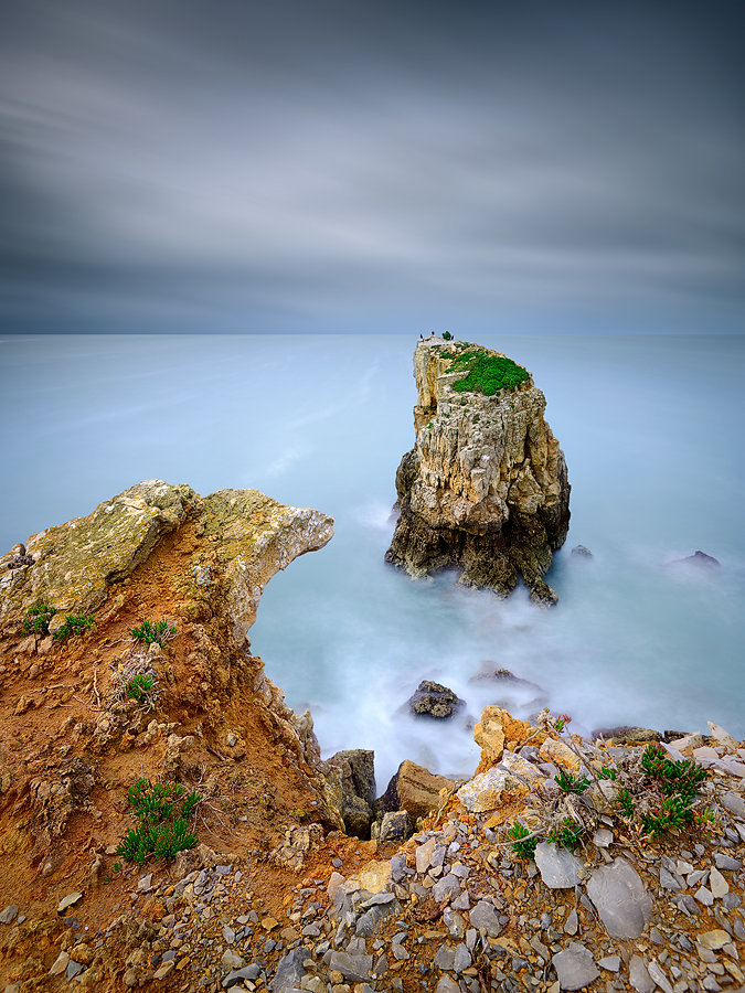 Cormorants-Island-900-3.jpg